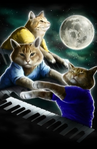 Three Keyboard Cat Moon