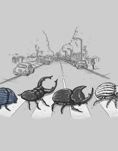 The Beetles Hero Shot