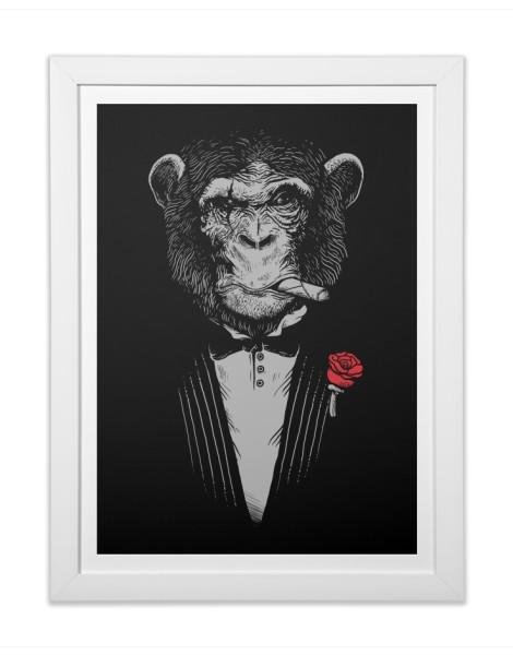 Monkey Business Hero Shot