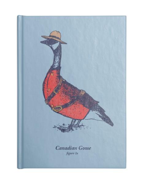 Canadian Goose Hero Shot