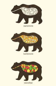 The Eating Habits of Bears