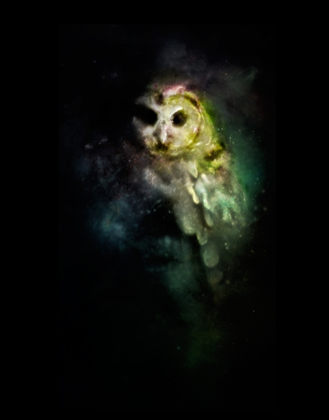 Owl Nebula Hero Shot