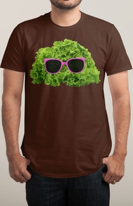 Mr. Salad Hero Shot