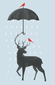 RainDeer Hero Shot