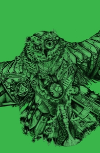 Frankenstein's Owl Hero Shot