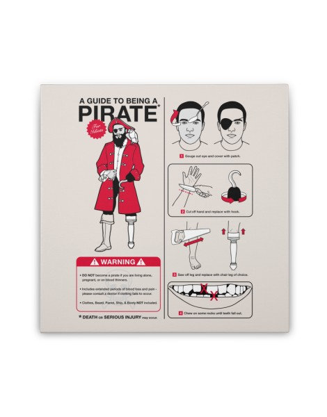 A Guide to Being a Pirate Hero Shot