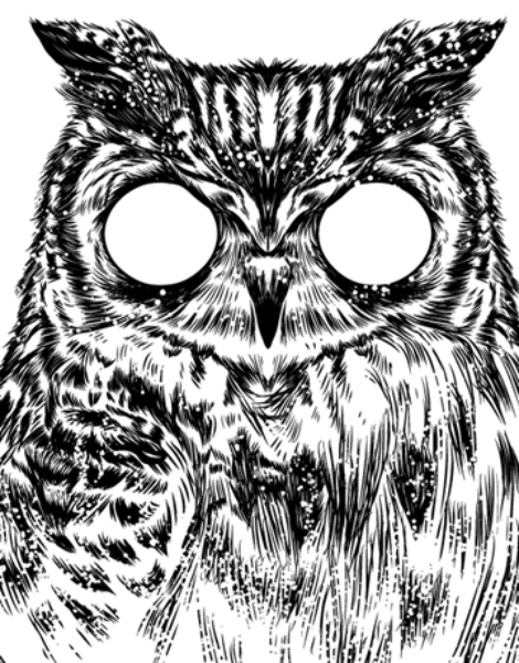 Owltical Illusion Hero Shot