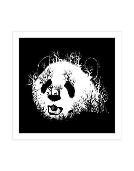 Hidden Panda Hill Hero Shot