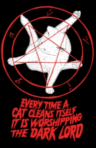 EVERY TIME A CAT CLEANS ITSELF IT IS WORSHIPPING THE DARK LORD