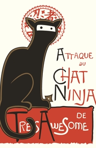 A French Ninja Cat!