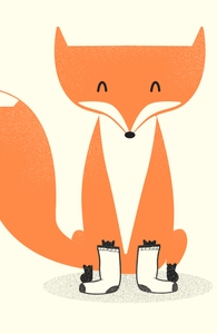 A Fox with Socks Hero Shot