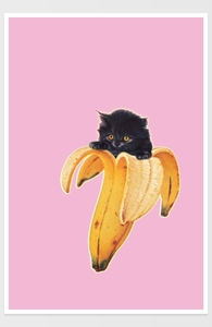Banana Kitty Hero Shot