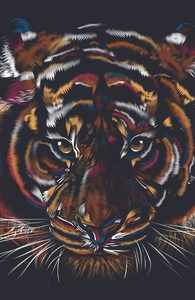 Wild Tiger Hero Shot
