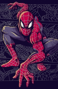 Spider Web Hero Shot