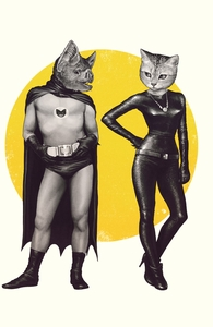 A Bat and a Cat Hero Shot