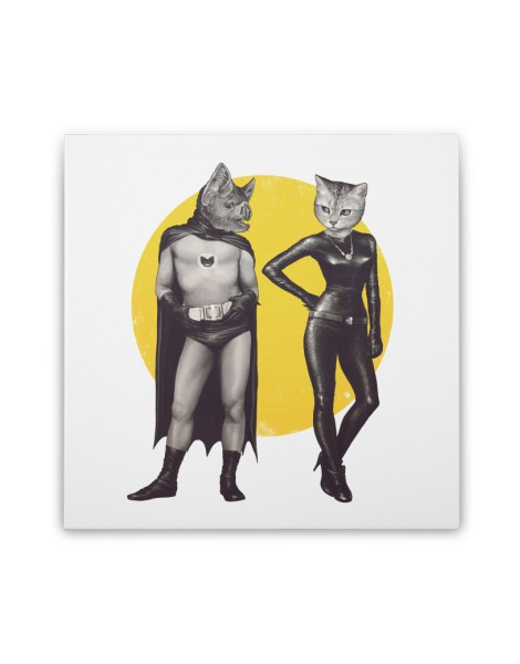 A Bat and a Cat Hero Shot