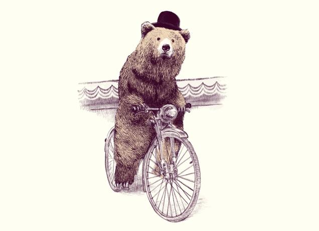 Bear! : bicycling | 636 x 460 jpeg 96kB