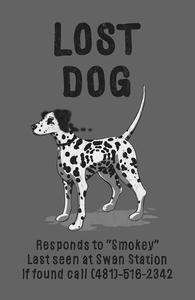 Lost Dog Hero Shot