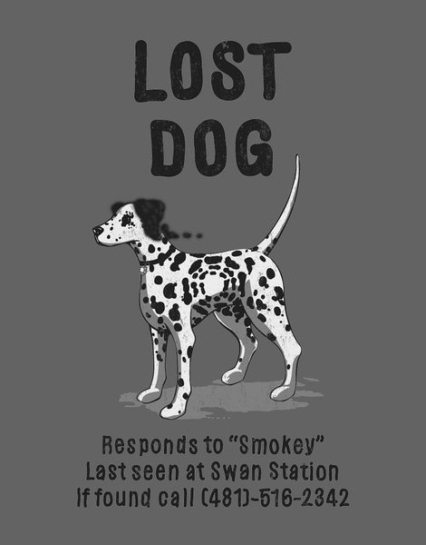 Lost Dog Hero Shot