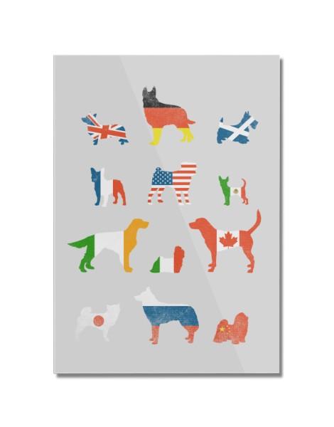 Many Nations Under Dog Hero Shot