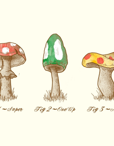 Mario Mycology Hero Shot
