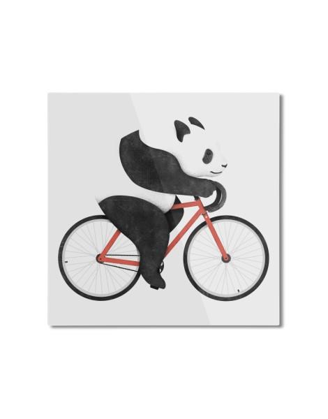 Panda Fixie Hero Shot