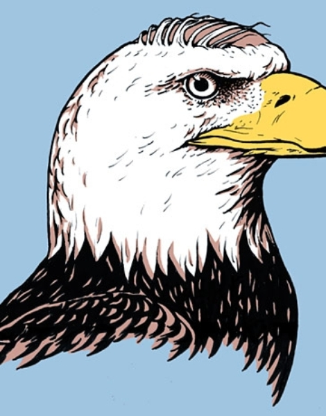 Bald Eagles t-shirt designs by artists worldwide
