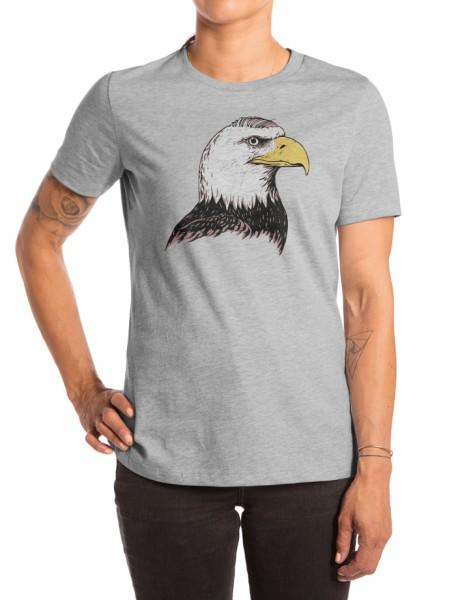 Bald Eagle Hero Shot