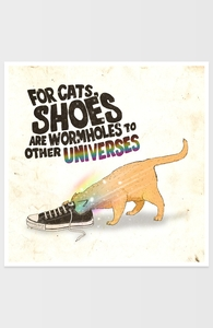 For Cats, Shoes are Wormholes to Other Universes Hero Shot