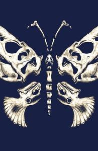 Fragile Giants: Girly Pima / Modal 3/4 Sleeve Dolman Hero Shot