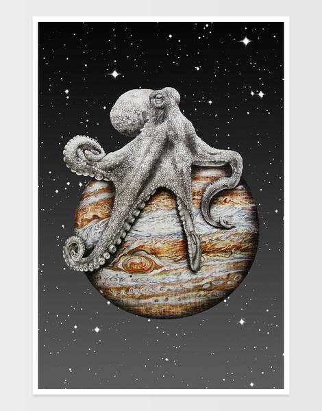 Celestial Cephalopod Hero Shot