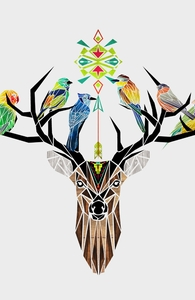 Deer Birds Hero Shot