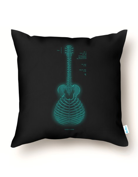 Acoustic Radiograph Hero Shot