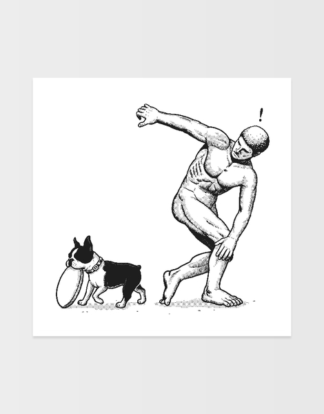 Dog & Frisbee Hero Shot