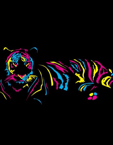 Paper Tiger Hero Shot