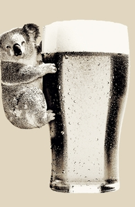 Koala Loves Beer Hero Shot