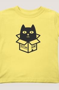 Cats Love Boxes Hero Shot