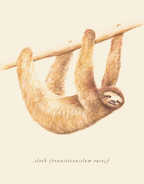 Css Animals: Sloth Hero Shot