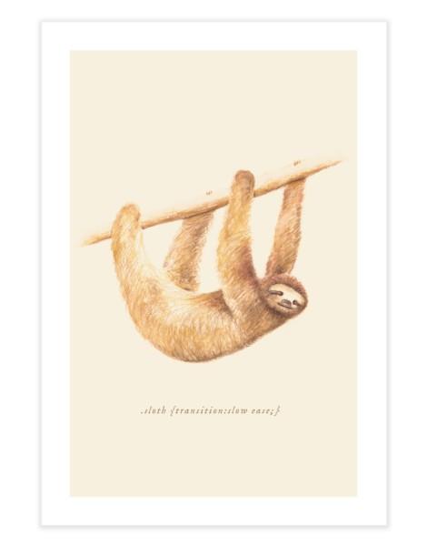 Css Animals: Sloth Hero Shot