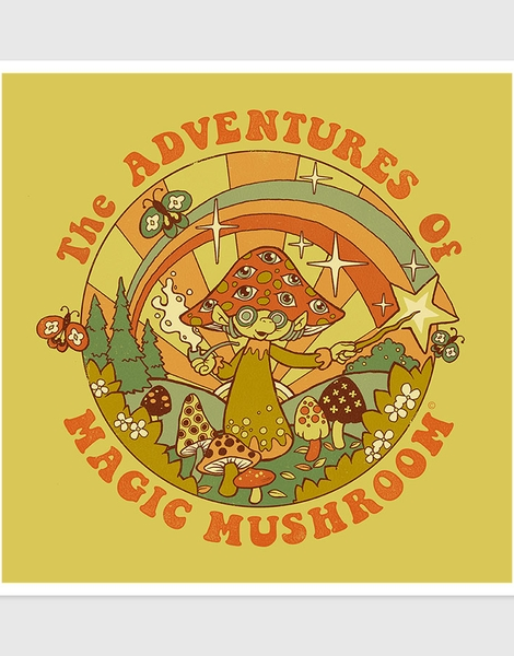 Magic Mushroom Hero Shot