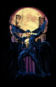 The Punisher is here! Hero Shot