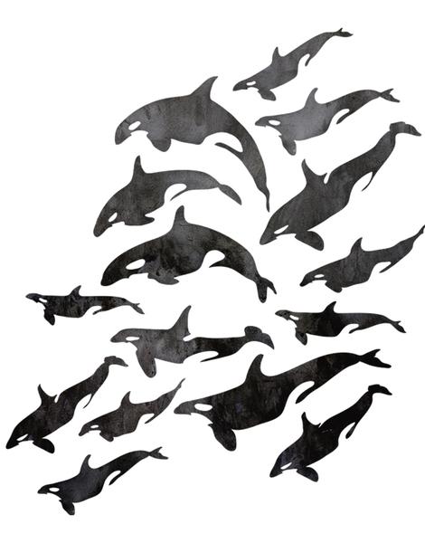 31205316 Animals t-shirt designs by artists worldwide