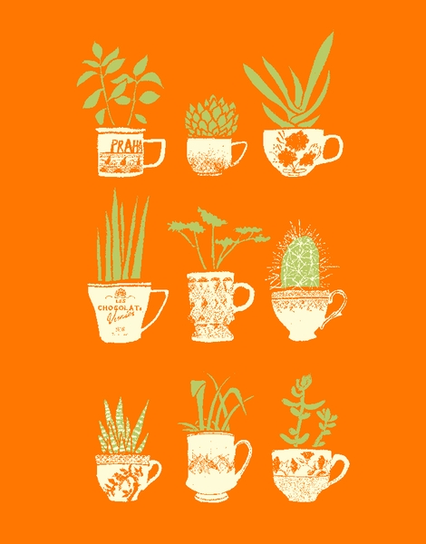 Teacup Succulents Hero Shot