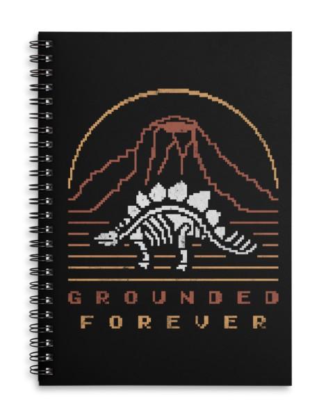 Grounded Forever Hero Shot