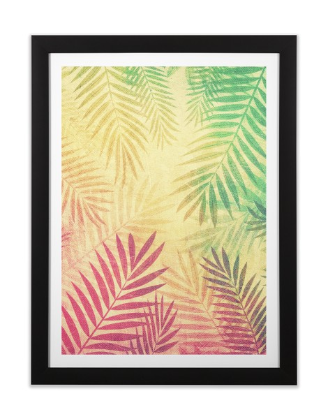 Tropical vibes! Hero Shot