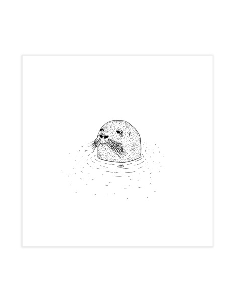 Sad Seal Hero Shot