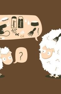 Hairstyle Secrets Of A Sheep