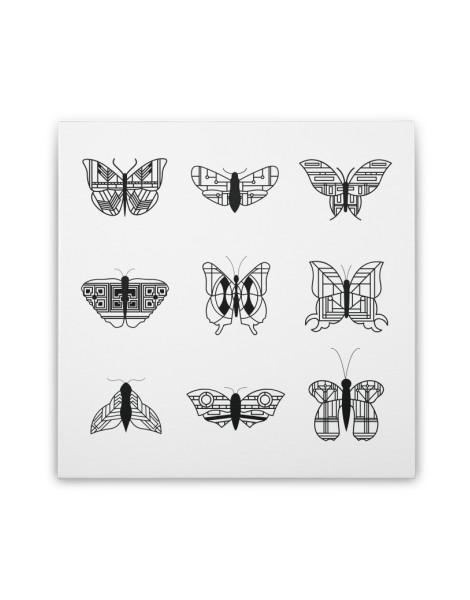 wright's butterflies  Hero Shot