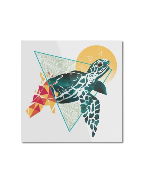 Geometric Turtle Hero Shot