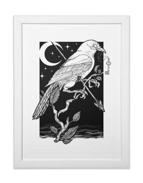 Night Crow Hero Shot